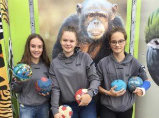 Alte Handbälle für den Zoo Neuwied